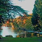 Friars Carse Hotel grounds & river by sarnia2