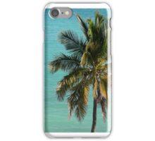 St François - Coconut Palm iPhone Case/Skin