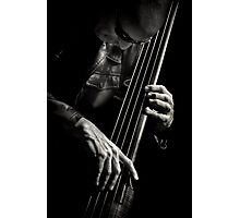 L'image - Tony Levin & bass Photographic Print