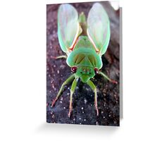 Green Grocer Greeting Card