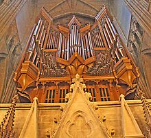 Great West Organ, Lancing College Chapel by Dave Godden