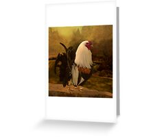 Rooster at Hanauma Bay Greeting Card