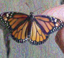 Monarch Butterfly ChangeArt by EggSpecially