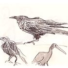 three birds by WoolleyWorld