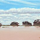 Darling Flood by Michael Jones