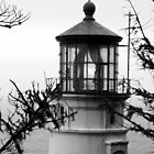 Cape Meares Lighthouse by searchlight