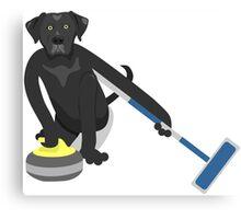 Black Labrador Retriever Curling Canvas Print