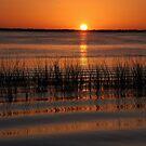 Florida Sunset by Susanne Van Hulst