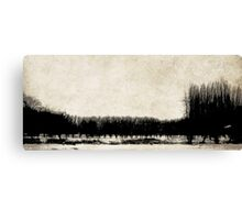 Stillness of Winter Canvas Print