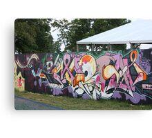 Fence Art Canvas Print