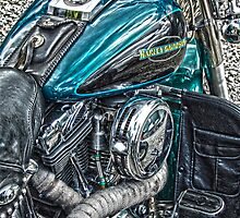Teal Harley Davidson by Diane E. Berry