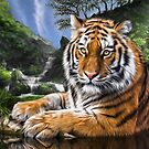 Enter The Tiger by Shannon Rogers