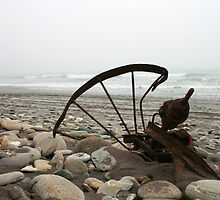 """misted rust""  hunts beach, south westland, nz by rina  thompson"