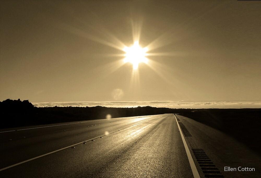 The Road Back Home by Ellen Cotton