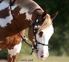 Hello Pretty by Emily Peak