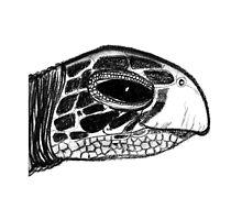 Ninja Turtle by Phasmida