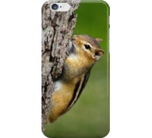 Chipmunk on Tree iPhone Case/Skin