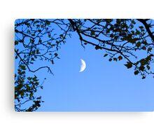 Daylight Moon Canvas Print