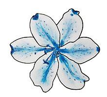 Fleur Précieuse by DemiRaquel