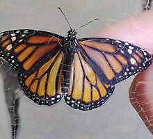 Monarch Butterfly ChangeArt II by EggSpecially