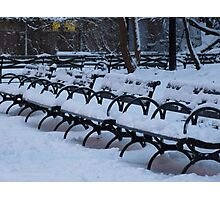 Benches in a Row in the Snow Photographic Print