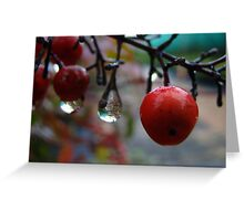 Red Berry Drops Greeting Card
