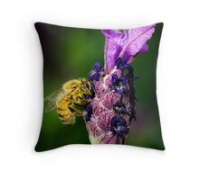 ...oh, lavender... Throw Pillow