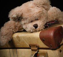 Teddy Bears Diaries by Ness Hopkins