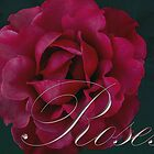 Roses calendar cover by Daphne Gonzalvez
