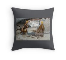 Uncovered By The Tide- Lyme Dorset UK Throw Pillow
