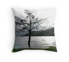Standing Water…or Standing in Water? Throw Pillow