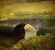 Terras Bridge by Catherine Hamilton-Veal  ©