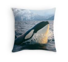 Orca - Tysfjord, Norway Throw Pillow