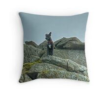 Tarn on Bowfell Throw Pillow