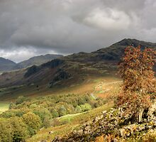 Upper Eskdale by VoluntaryRanger