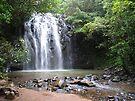Elinjaa Falls by Linda Lees