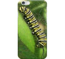 Monarch Caterpillar - Sunset Relaxing iPhone Case/Skin