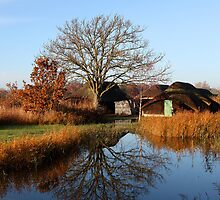 Hickling Broad by Norfolkimages