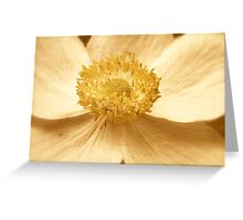 Clematious Center Greeting Card