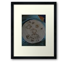 fishy  shell lazy suzanne Framed Print