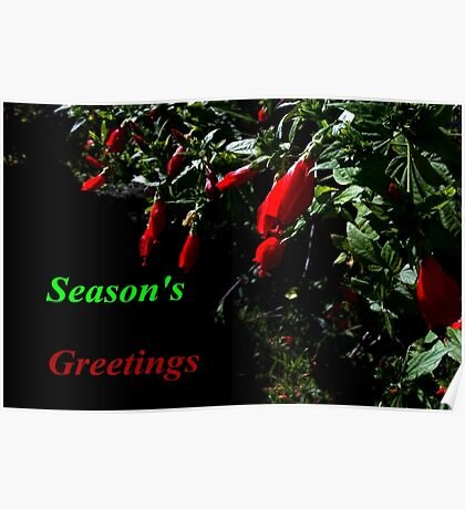 Little red Christmas bells Poster