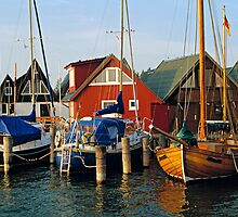 MVP76 Boats in Althagen Harbour, Ahrenshoop, Germany by David A. L. Davies