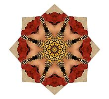 Red Ringed cheetah print medallion by Beth BRIGHTMAN