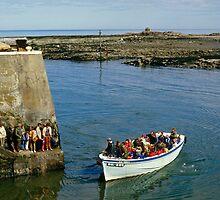 Farne Island Boat trips, Northumberland, UK 1980s by David A. L. Davies