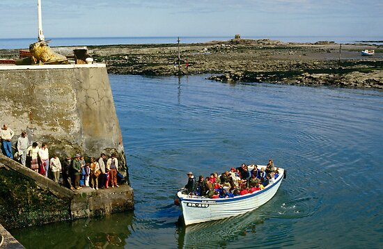 Farne Island Boat trips, Northumberland, UK 1980s by David A. L. Davies