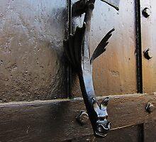 Unusual door knocker by buttonpresser