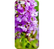 Lesser Purple Fringed Orchid III iPhone Case/Skin
