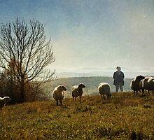 Flock by Milos Markovic