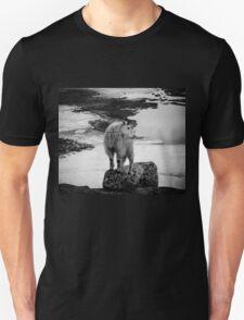 Enchantment Goat T-Shirt