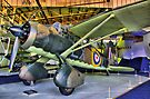 Westland Lysander III - Hendon - HDR by Colin  Williams Photography